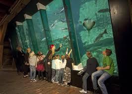 nieuwe aquariums te koop in drenthe